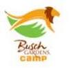 Busch Gardens - Tampa Bay